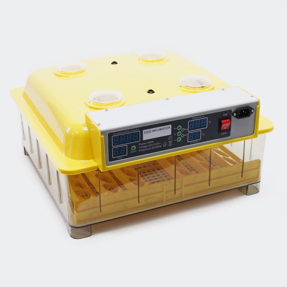 Automatische Brutmaschine (48 Eier)