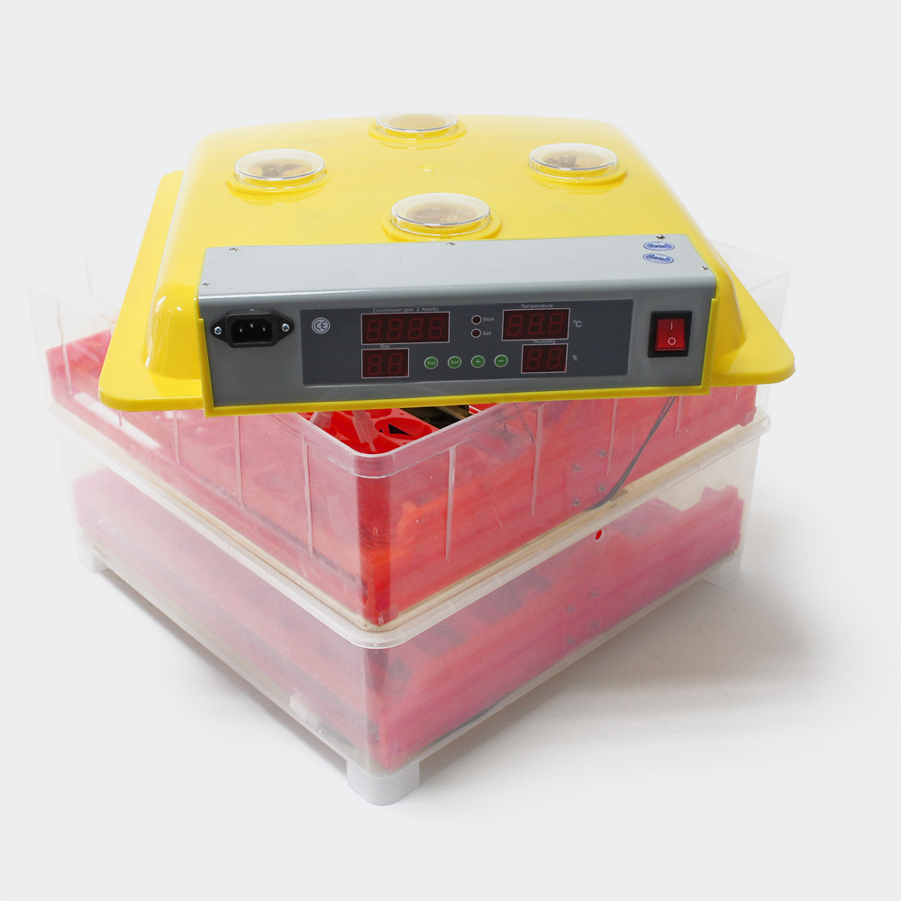 Automatische Brutmaschine WQ-72 Inkubator