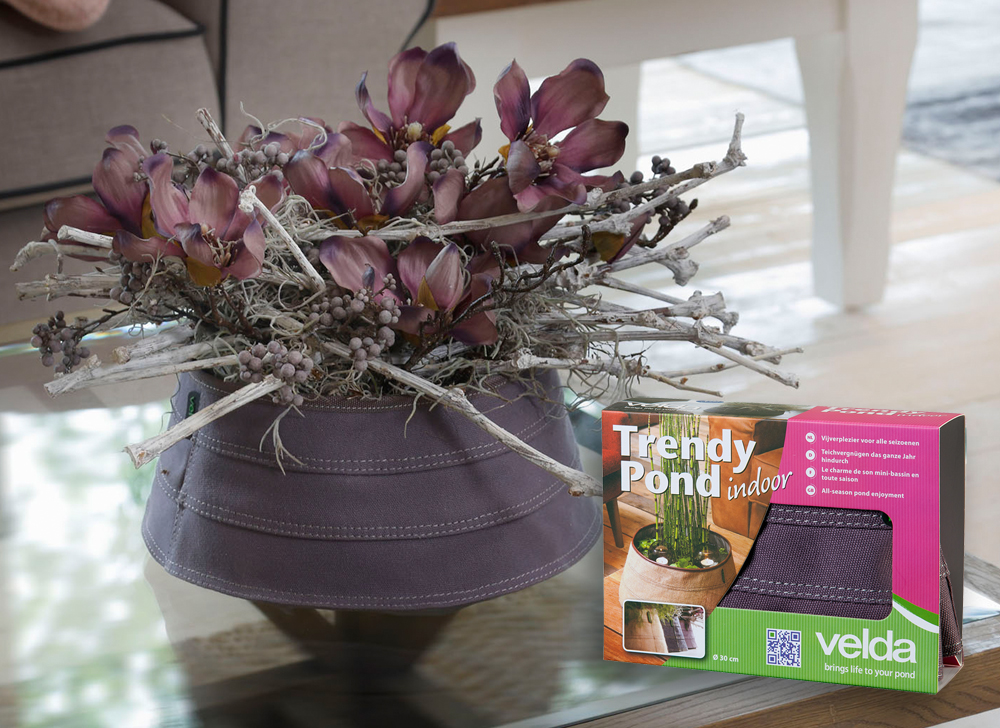 wiltec velda trendy miniteich indoor violet 30cm 5l einzigartiges wasser trendy miniteich. Black Bedroom Furniture Sets. Home Design Ideas