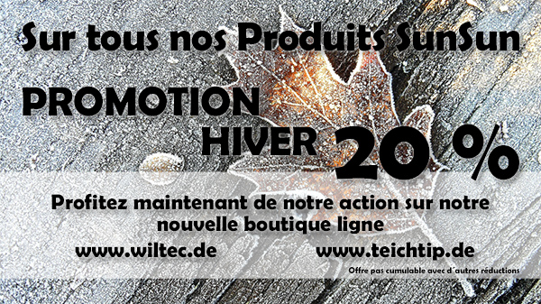 promotion hiver